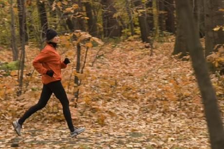 Läufer joggt durch Herbstwald