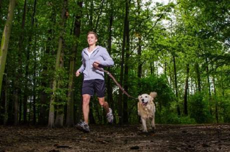 Dogging: Laufen mit dem Hund