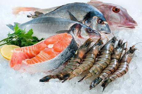 Unterschiedliche Fischarten