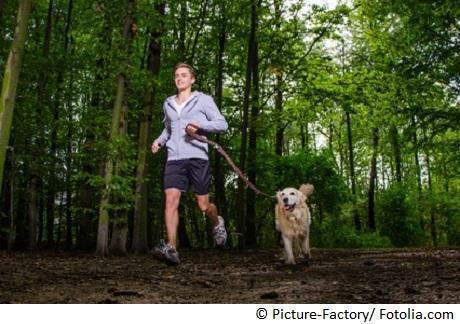 Jogger führt seinen hund an der leine