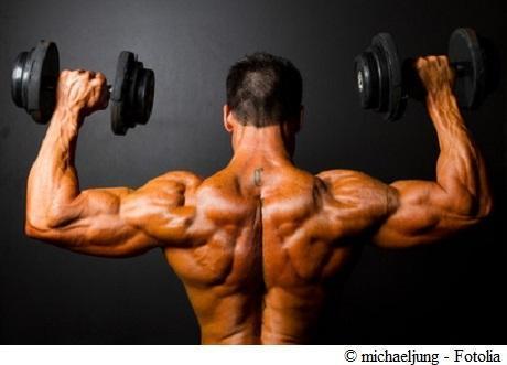 Proteine zum Muskelaufbau